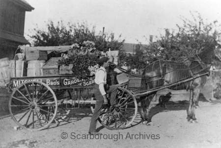A.H. Mitchell's store wagon